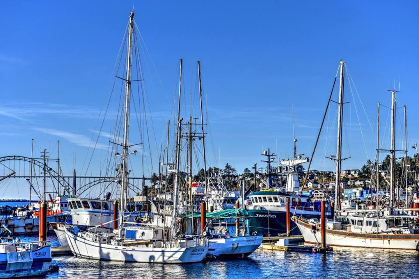 Walk along the bay front and watch the active fishing fleet.