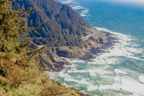 Be sure to visit Cape Perpetua while you're in town for amazing views like this.